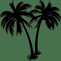 Miami Logo min
